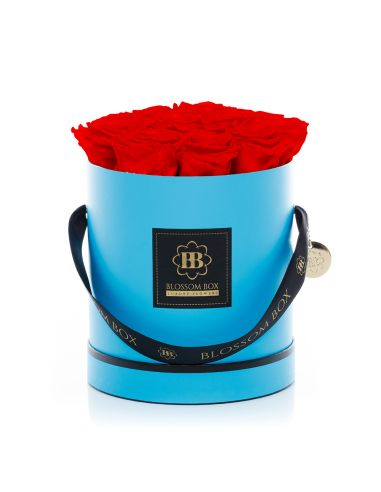 Large - Classic Blue - En Vogue - Adriana Red